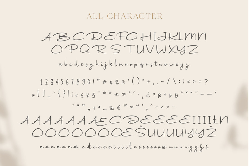 wondeur-modern-script-font