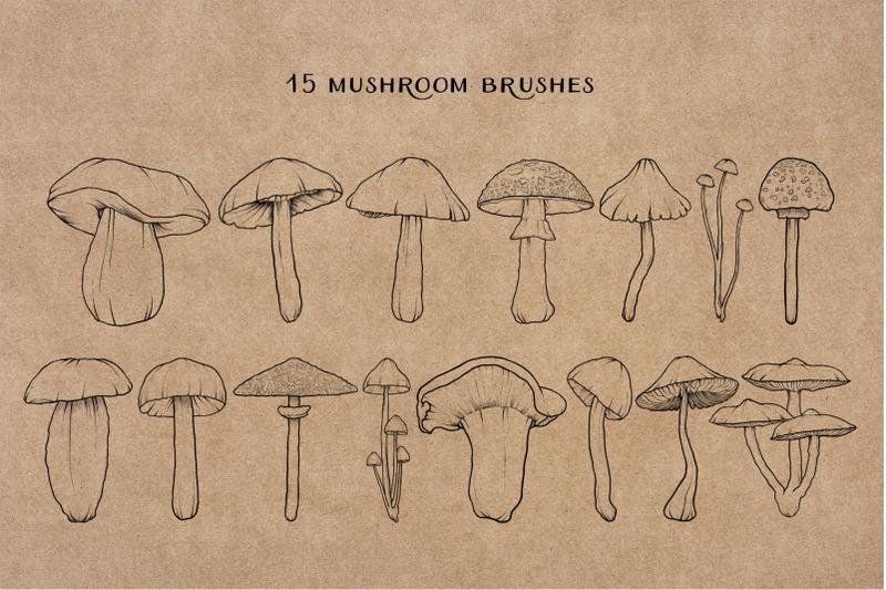 The Hungry JPEG Mushroom Procreate Brushes By Auramarina