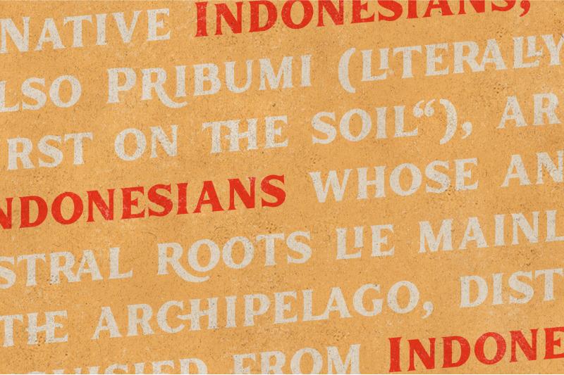 inlander-retro-display-font