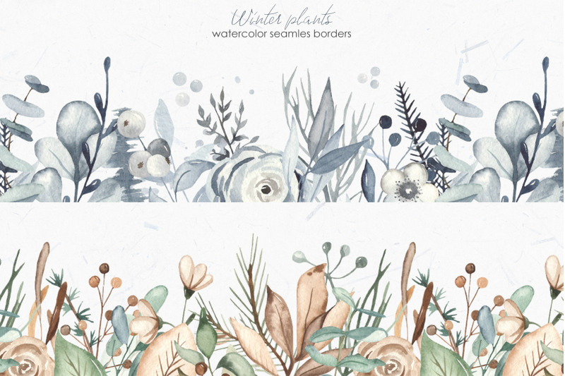 winter-plants-watercolor-collection