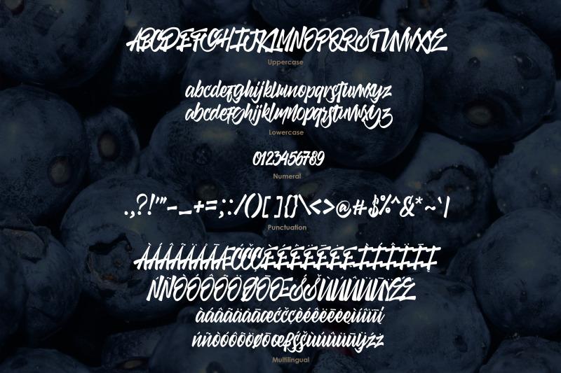 the-vintera-handstylish-font