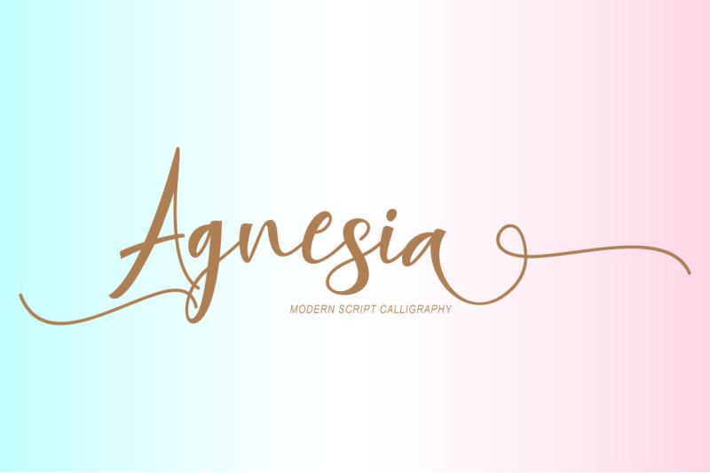 agnesia-script
