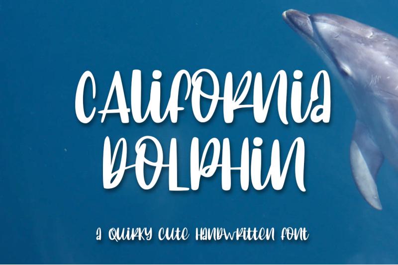 california-dolphin-quirky-handwritten