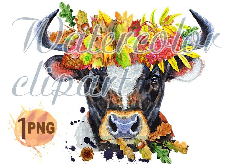 watercolor-illustration-of-black-bull