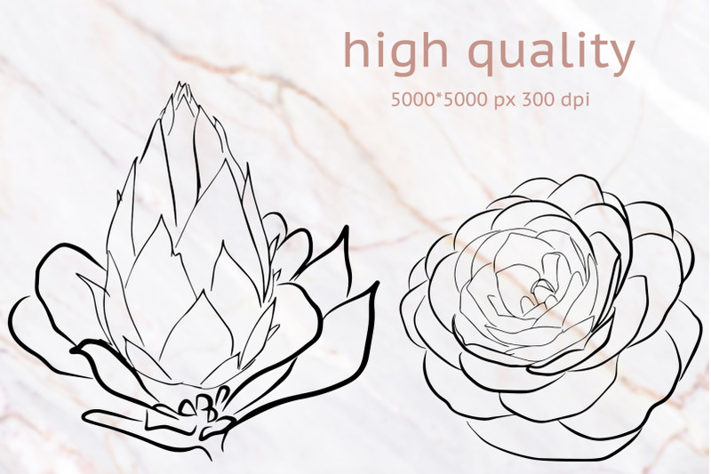10-hand-drawn-vector-flowers
