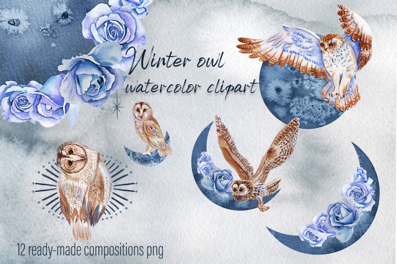 winter-birds-owl-watercolor-set