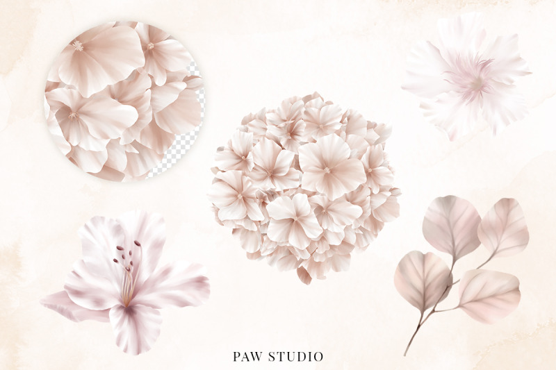 wedding-flowers-leaves-rose-lily-hydrangea-eucalyptus-clipart