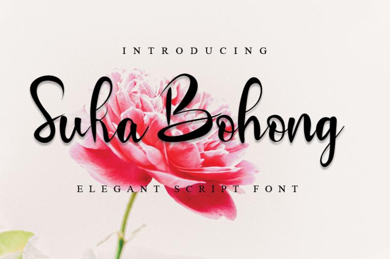 suka-bohong-modern-script-font
