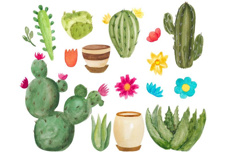 watercolor-succulent-clipart-floral-botanical-clip-art-house-plants