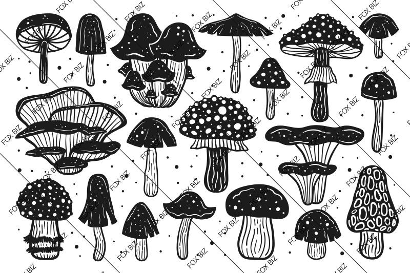 mushrooms-botanical-nature-elements-multi-colored