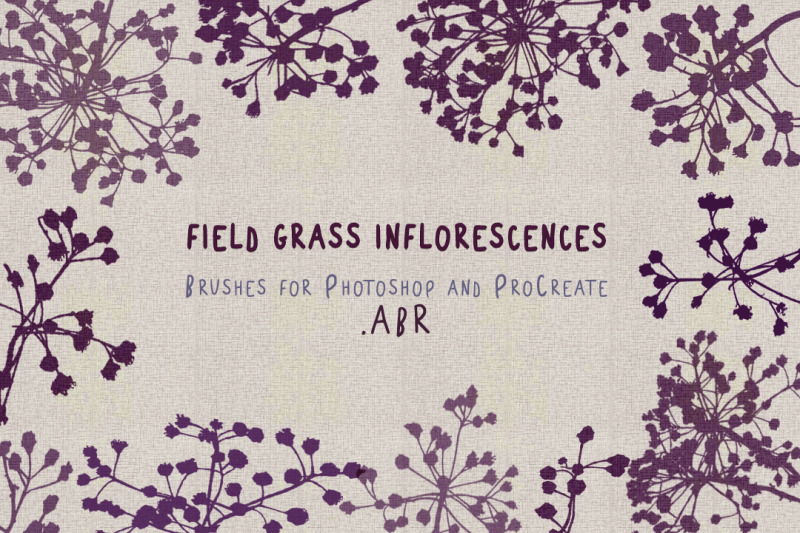 field-grass-inflorescence-brushes-abr