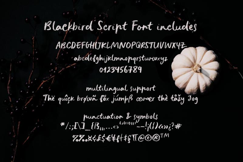 blackbird-crayon-script-svg-font
