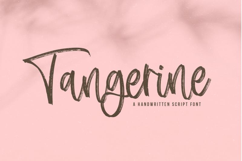 tangerine-brush-script-font