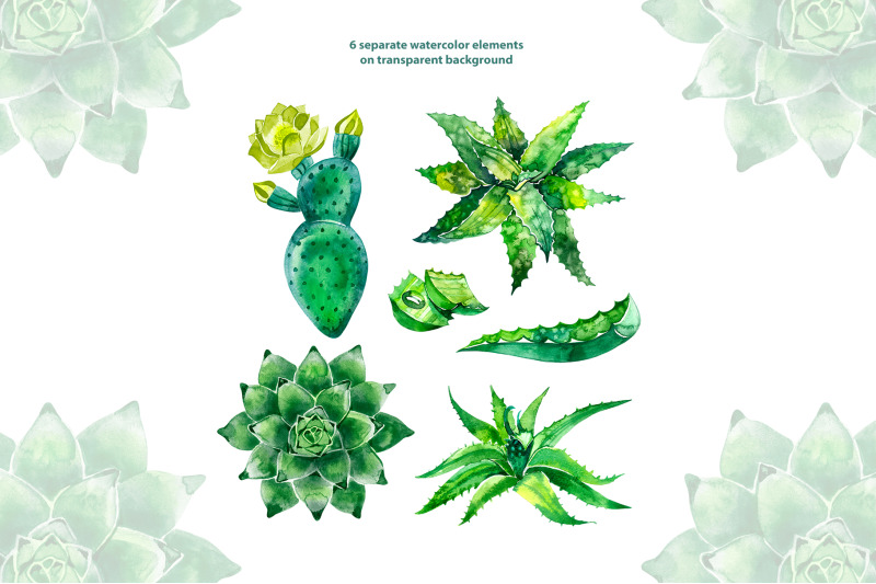 watercolor-succulents-set