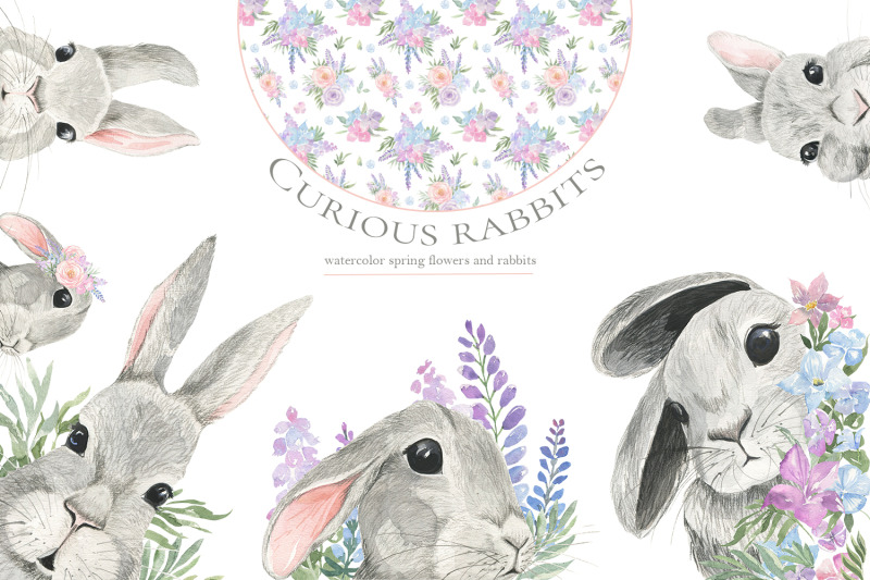 curious-rabbit-watercolor