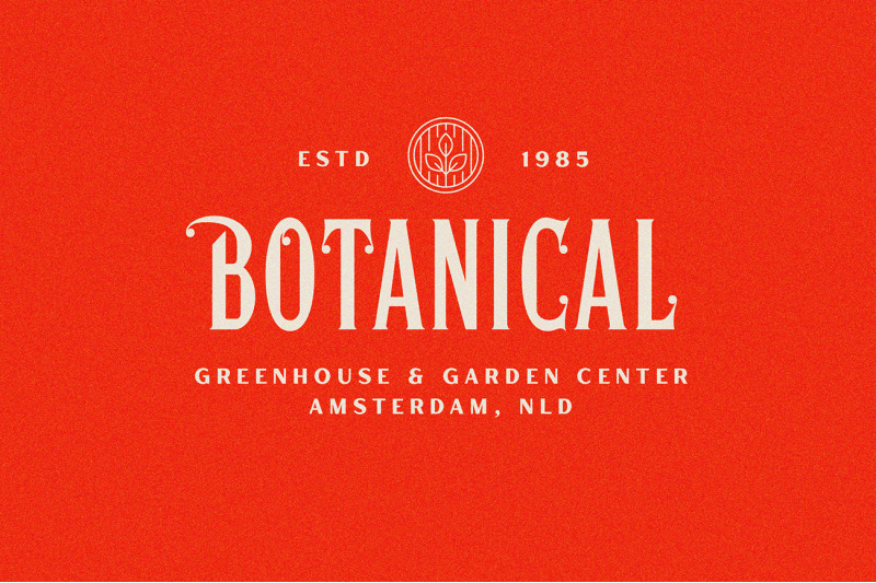 hertical-crafted-display-font