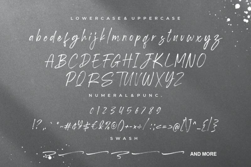 shutterland-handbrush-script