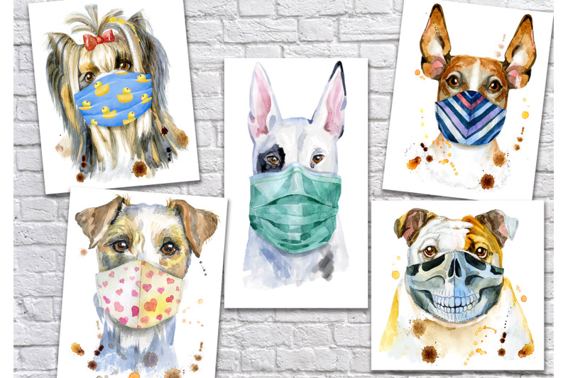 dogs-in-face-mask