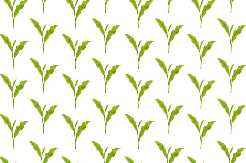tea-leafs-hand-painting-pattern