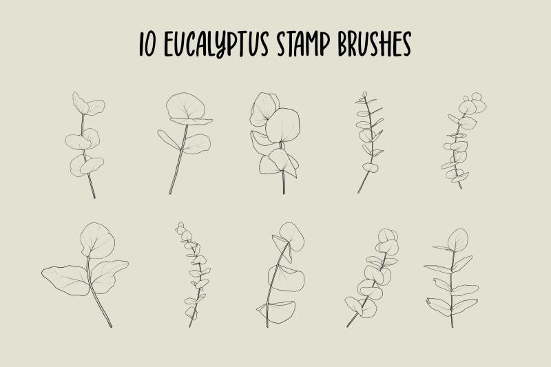 fern-and-eucalyptus-procreate-stamp-brushes
