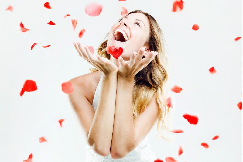 petals-overlays-petals-red-rose-overlays