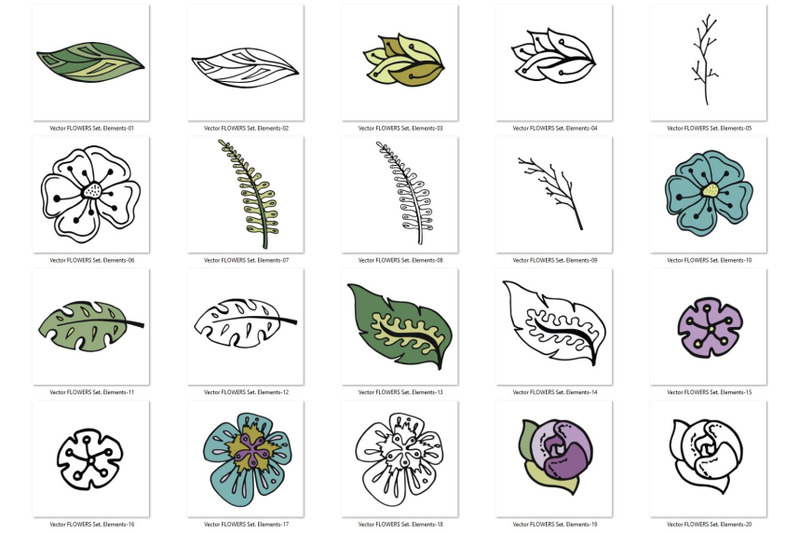 vector-flowers-set
