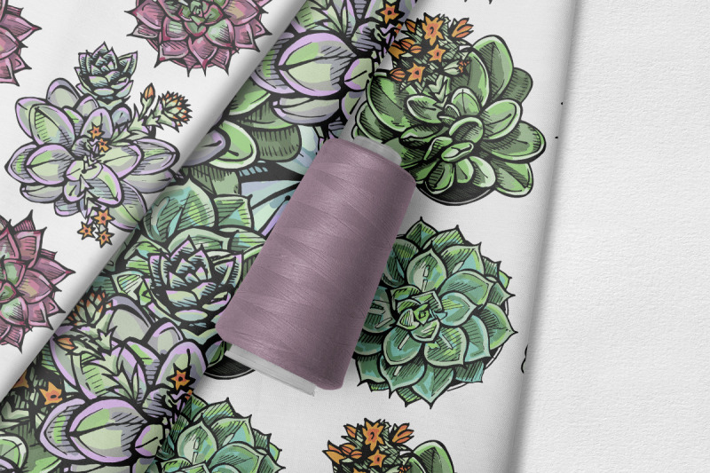 6-seamless-patterns-with-succulents-svg-ai-eps-psd-png-jpeg