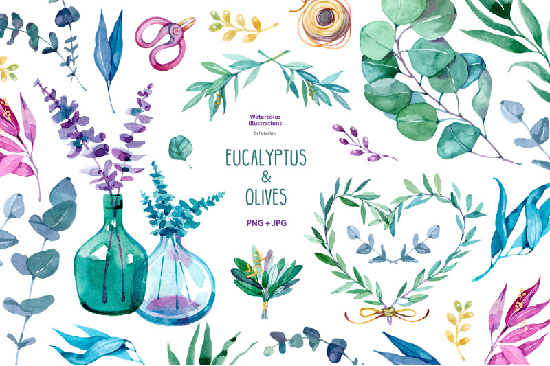 watercolor-eucalyptus-and-olive