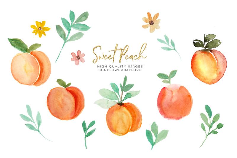 peach-fruit-clipart-watercolor-peach-clipart-peach-leaves