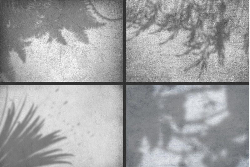 50-plants-shadows