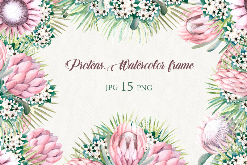 protea-flowers-watercolor-frames