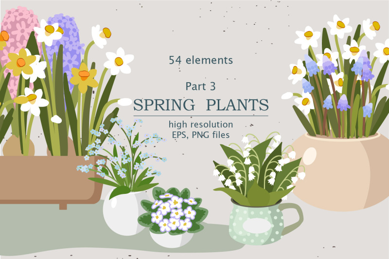 spring-indoor-plants-part-3