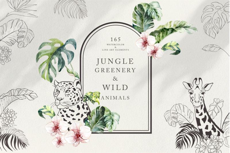 jungle-greenery-amp-amp-wild-animals