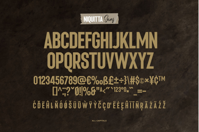 niquitta-mirzani-font-duo
