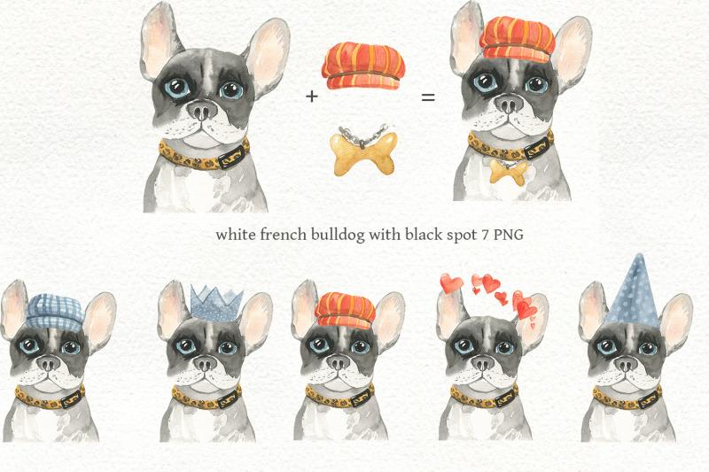 big-set-french-bulldog