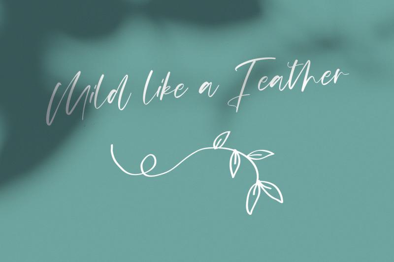mildlight-feminine-signature-font