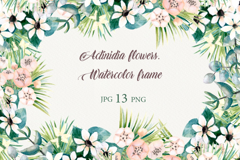 actinidia-flowers-watercolor-frames