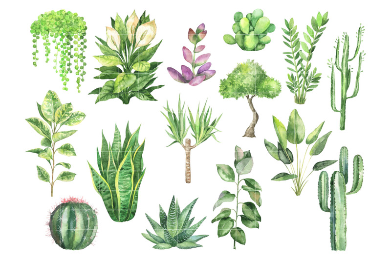 watercolor-home-plants-in-pots-boho-home-decor-clip-art-house-plant