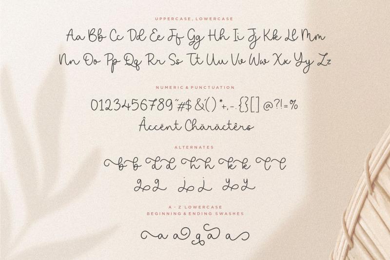 saylora-beautiful-monoline-script-font