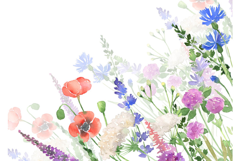 watercolor-wildflowers-clipart-botanical-floral-files-flowers-clip-art