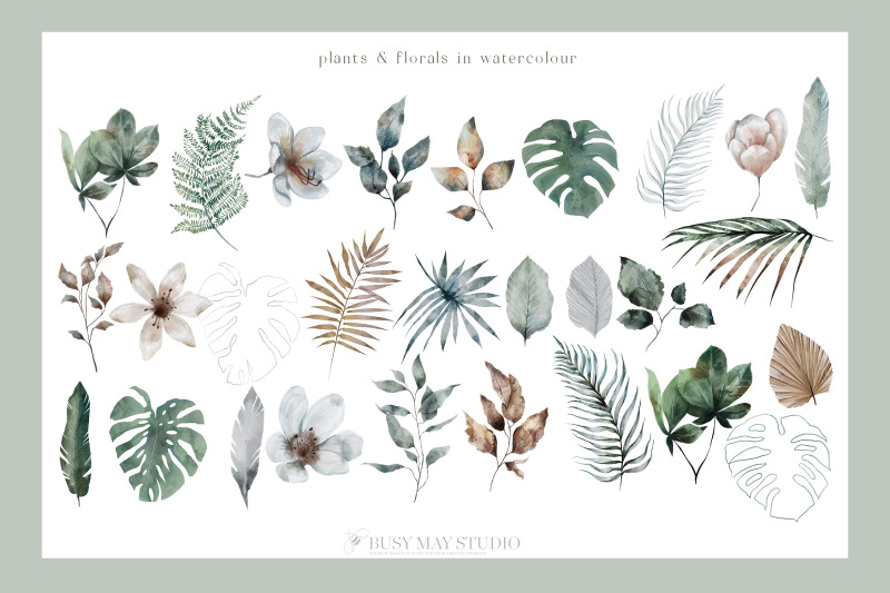 modern-tropical-huge-collection-jungle-animal-plant-patterns