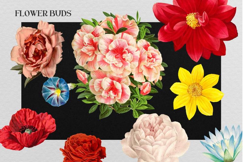 floral-monogram-alphabet-letters