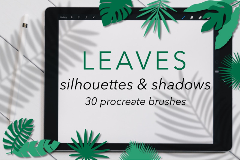 30-leaves-shadows-and-silhouettes-stamp-brushes-for-procreate