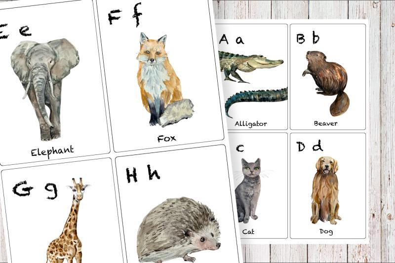 watercolor-abc-animals-flashcards