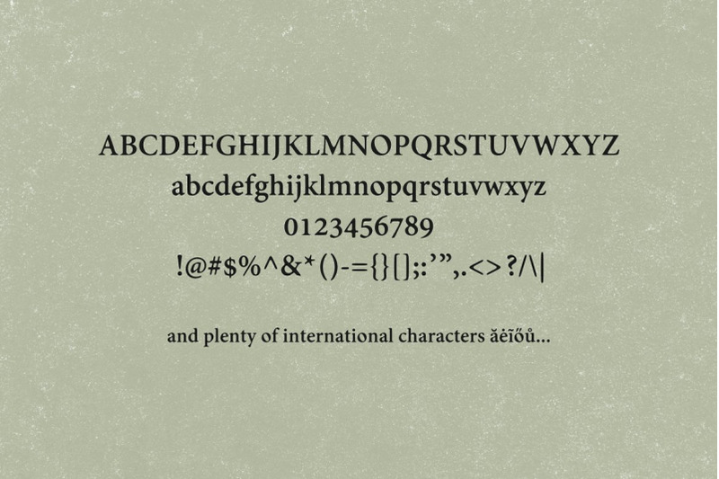 wilkeson-modern-serif-typeface