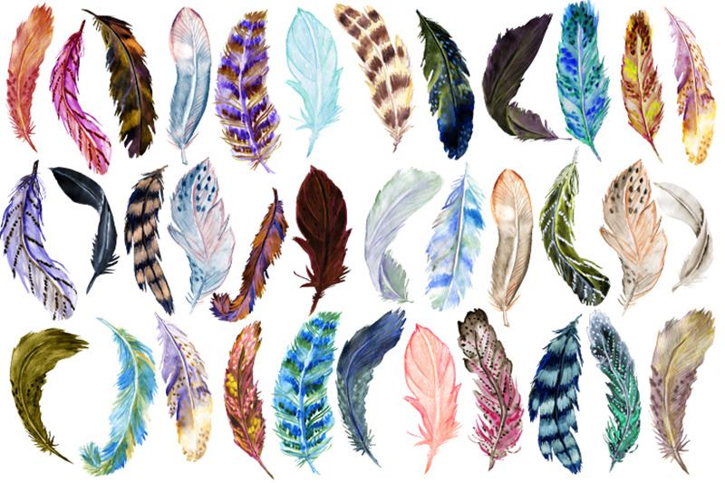 watercolor-feathers-clipart-4-patterns-4-wreaths