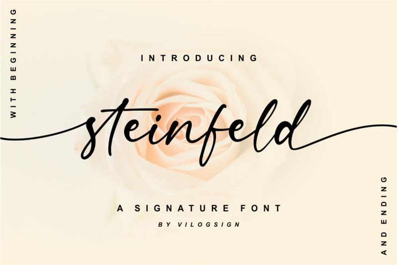 steinfeld-a-handwritten-script-font