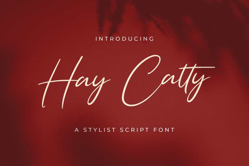 hay-catty-handwritten-font