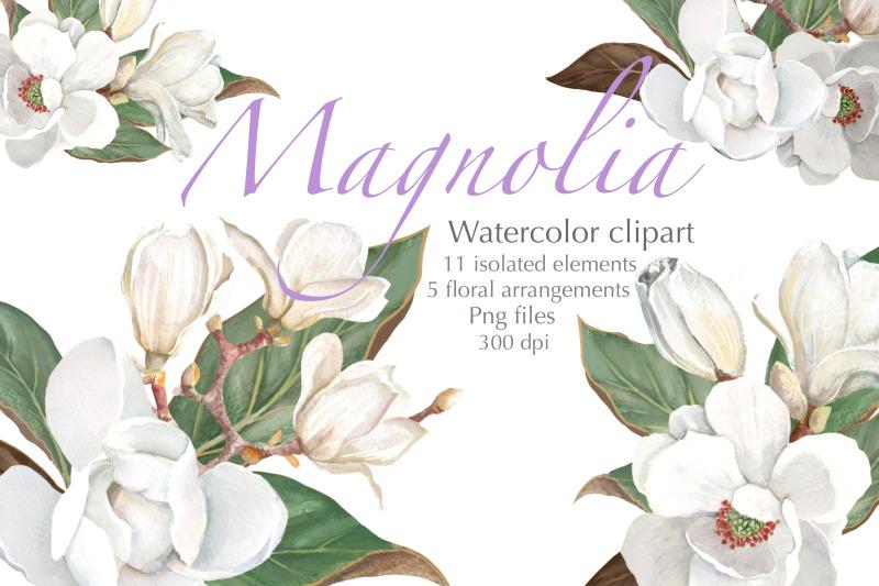 magnolia-flower-watercolor-floral-clip-art