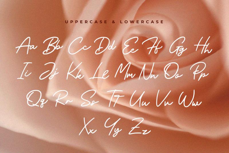 meyried-script-font